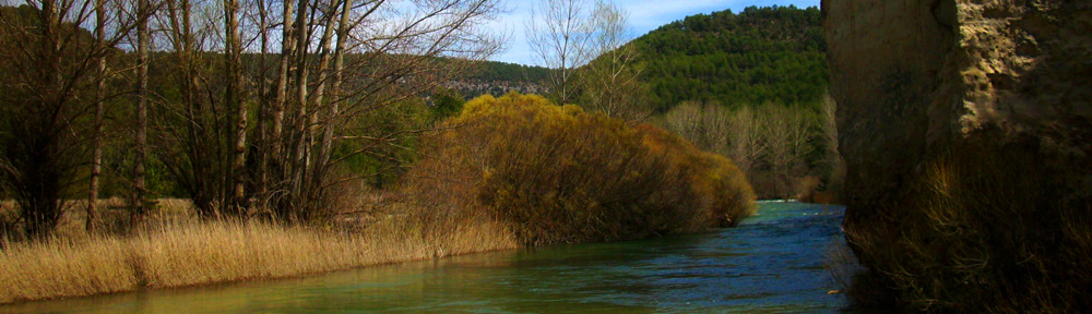 Sociedad de Pescadores Río Sorbe